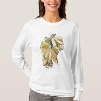 T-shirt Banane, 1816