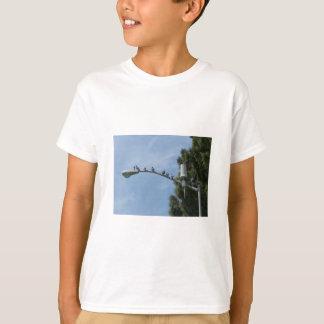 T-shirt Bande de huit pigeons se reposant sur le courrier
