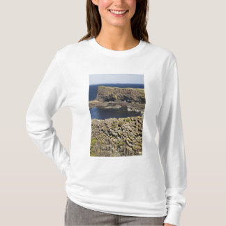T-shirt Basalte polygonal, Staffa, outre d'île Mull,