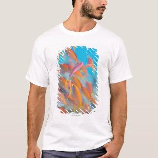 T-shirt Basslet de fée de pêche