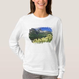 T-shirt Beargrass au passage de Logan en parc national de