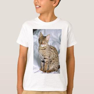 T-shirt Beau visage mignon de chat du Bengale