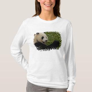 T-shirt Bébé de panda géant mangeant le bambou (Ailuropoda