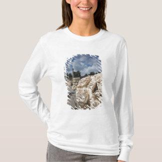 T-shirt Beit elle-Un parc national, ruines de Romain-ère