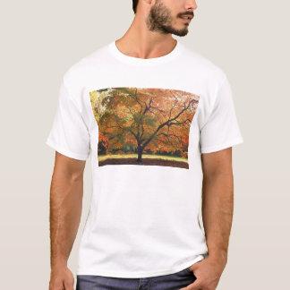 T-shirt Bel arbre d'automne
