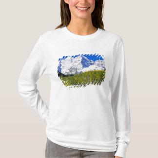 T-shirt Bells marron avec la forêt de tremble d'automne