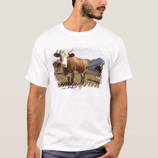 T-shirt Bétail