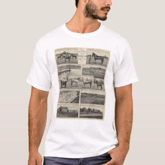 T-shirt Bétail au Kansas