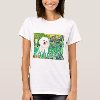 T-shirt Bichon Frise 4 - iris