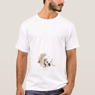 T-shirt Blanc et bouledogue bronzage
