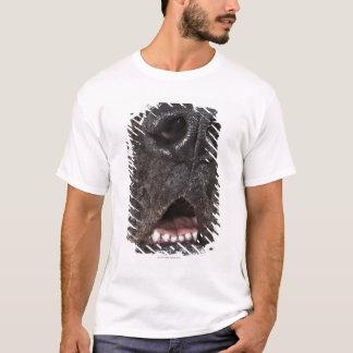 T-shirt Bouche de great dane, plan rapproché