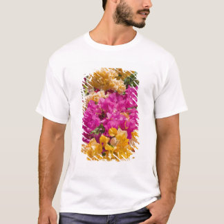 T-shirt Bouganvilleau, caïman Brac, Îles Caïman,