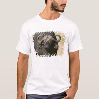 T-shirt Buffalo de cap (caffer de Syncerus), masai Mara