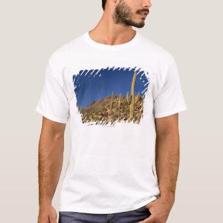 T-shirt Cactus de Saguaro et montagnes de Tucson, Tucson