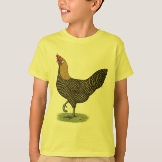 T-shirt Campine :  Poule d'or