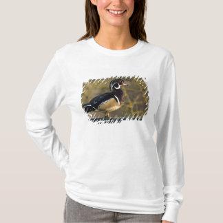 T-shirt Canard en bois masculin, Canada