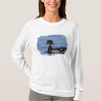 T-shirt Canard en bois, sponsa d'Aix, appeler masculin,
