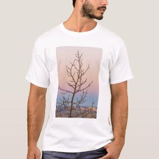 T-shirt Canyon de Bryce, Utah. Arbre nu devant le coucher