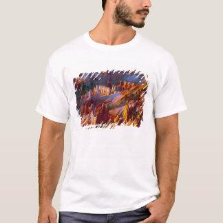 T-shirt Canyon de Bryce, Utah, Etats-Unis 2