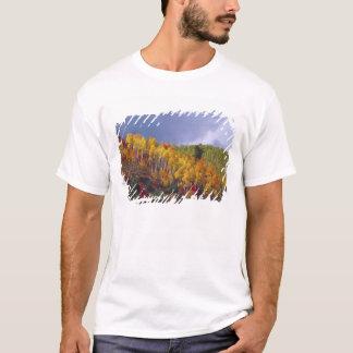 T-shirt Canyon de Logan en Utah en automne avec le