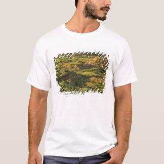 T-shirt Canyon peint après tempête en Theodore Roosevelt