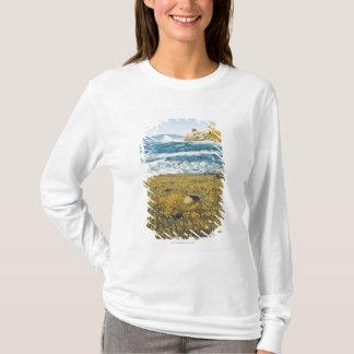 T-shirt Cap Kiwanda et l'océan pacifique