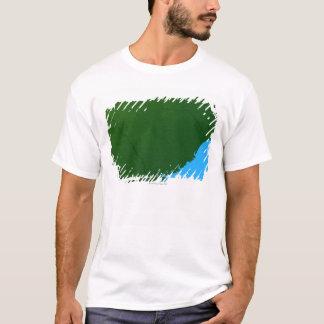 T-shirt Carte de la Caroline du Sud 2