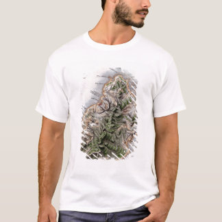 T-shirt Carte des Îles Maurice, illustration 'Paul et