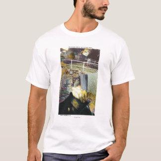 T-shirt Cascade d'or et vue naturelle de pont