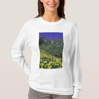 T-shirt Cascade et fleurs sauvages dans le pré alpin,