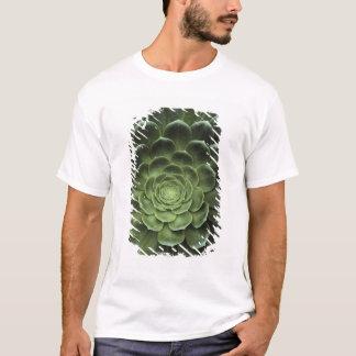 T-shirt Centre de cactus