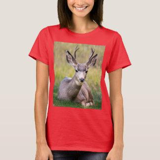 T-shirt Cerfs communs dans les bois