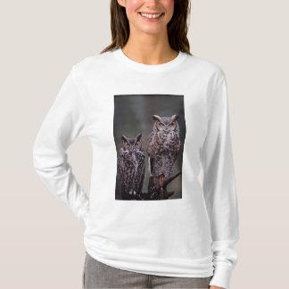 T-shirt Ces grands hiboux à cornes (virginianus de Bubo),