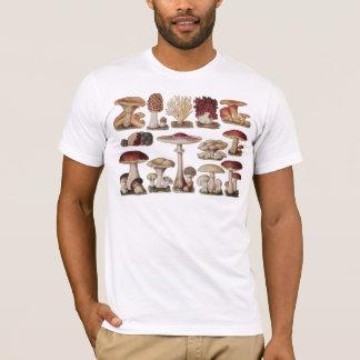 T-shirt Champignons botaniques vintages