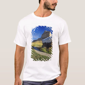 T-shirt Chariot de Conestoga au ressortissant de