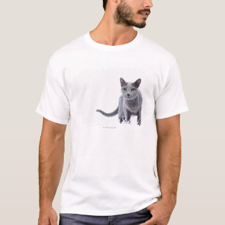 T-shirt Chat bleu russe