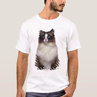 T-shirt Chat de Ragdoll