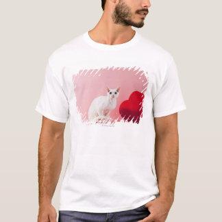 T-shirt chat Impair-eyed