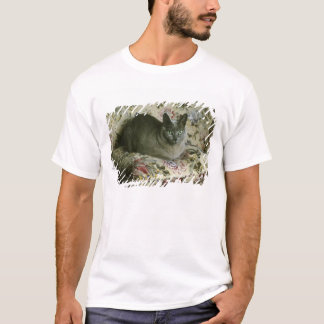 T-shirt Chat, Minnie, Tonkinese.