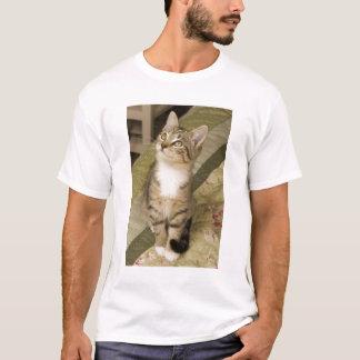 T-shirt Chat tigré argenté sur le couvre-lit