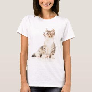 T-shirt Chaton