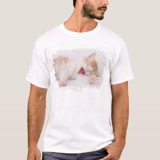 T-shirt Chaton de baîllement sur le fond blanc