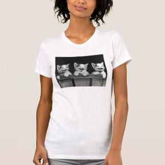 T-shirt Chatons