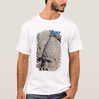 T-shirt Chef de Zeus-Oromandes et une déesse