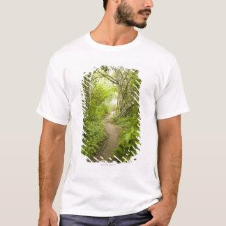 T-shirt Chemin à travers la forêt