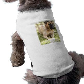 T-shirt Chemise anglaise de chien de mastiff