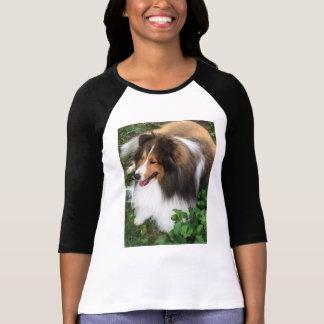 T-shirt Chemise magnifique de base-ball d'amant de Sheltie