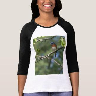 T-shirt Chemise orientale d'oiseau bleu