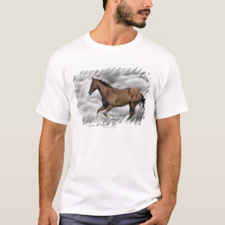 T-shirt Cheval courant