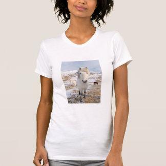 T-shirt Cheval islandais blanc, Islande